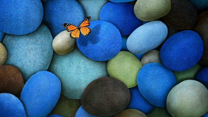 cool-butterfly-loving-butterflies-nature-on-blue-stones-wallpaper